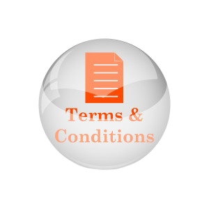 2nd T&Cs Icon for hubspot web